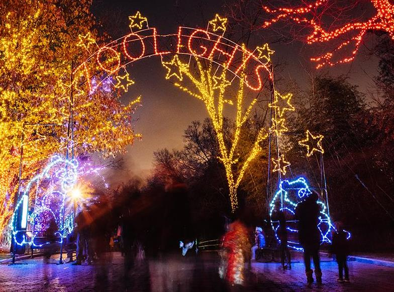 Join Giant At ZooLights